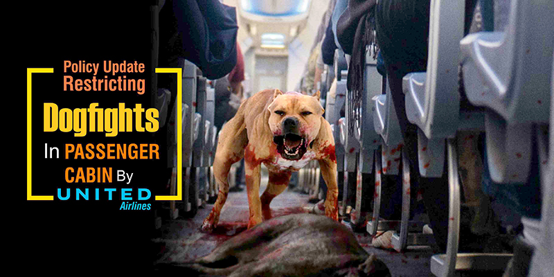 Policy Update Restricting Dogfights In Passenger Cabin By United Airlines