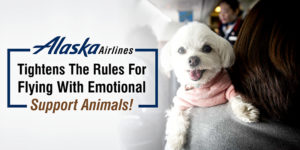 Alaska Airlines Ticket Cancellation Amp Refund Policy
