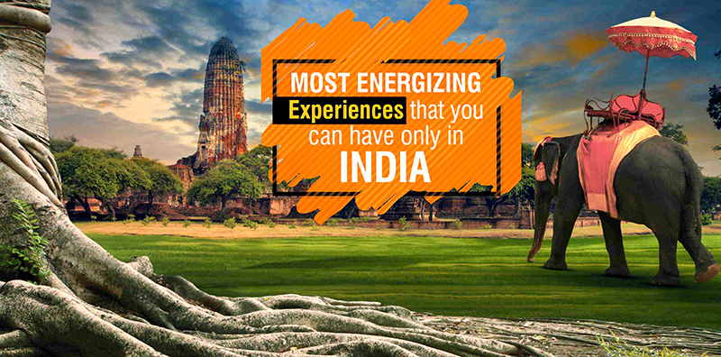 Most Energizing Experiences That You Can Have Only In India