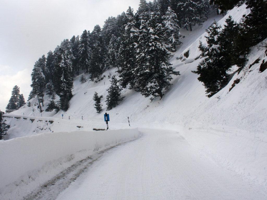 Witness the Snowfall